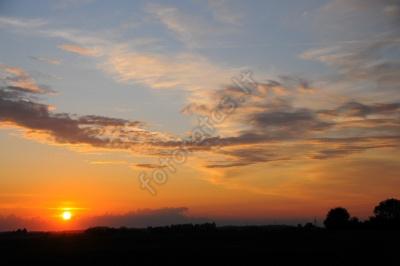 dangus-03.jpg