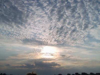dangus-12.jpg